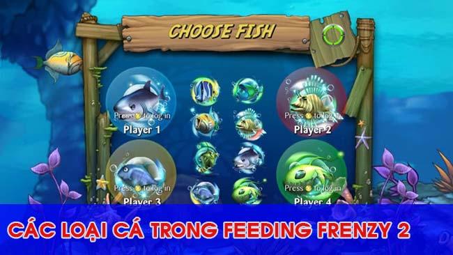 he-thong-sinh-vat-trong-feeding-frenzy-2